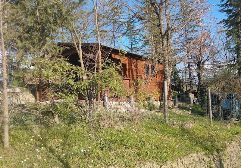 casetta rustica ad incastro in legno di abete massello spessore 40 mm con terrazzo porta e finestra frontali